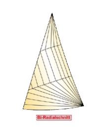 Bi-Radialschnitt Segel