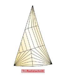 Tri-Radialschnitt